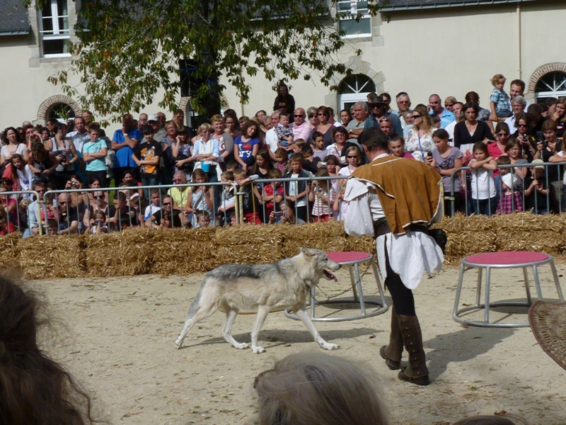 Les loups Compagnie Attawack 2012